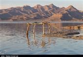 احیا دریاچه ارومیه به 10 میلیارد متر مکعب آب نیاز دارد