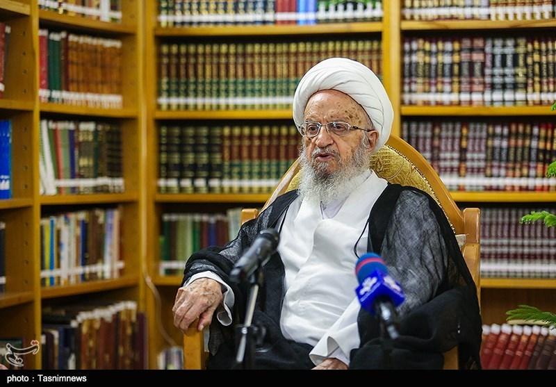 آیتالله مکارمشیرازی: اتحاد شیعیان در آفریقای جنوبی باید روزبهروز تقویت شود
