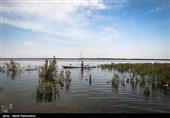 خوزستان  آخرین تلاش ها برای نجات شادگان از سیلاب + فیلم