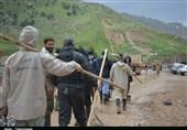 """فیلم/ """"درختان در حال مرگ پلدختر"""" چشم انتظار کمک جهادگران"""