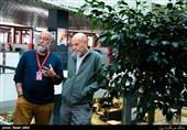 بابک کریمی در دومین روز سیوهفتمین جشنواره جهانی فیلم فجر