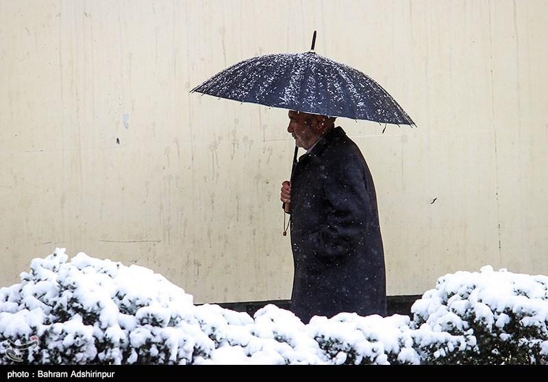 """دمای کدام استانها به """"زیر صفر"""" میرسد/ هشدار هواشناسی به کشاورزان"""