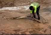 تخلیه کامل سیلاب از آققلا و گمیشان؛ روند بازسازی مناطق سیلزده استان گلستان شتاب گرفت
