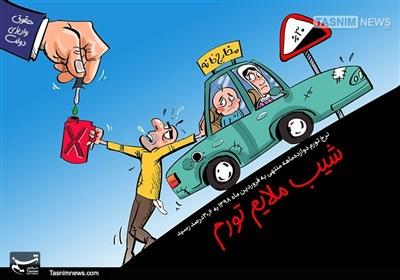 کاریکاتور/ نرخ تورم 30درصدی شد