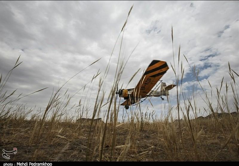 بوشهر| 2500هکتار اراضی دشتستان علیه ملخ صحرایی نیاز به سم پاشی هوایی دارد
