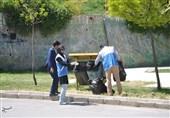 """آیا کابوس دفن غیر اصولی زباله دست از سر محیط زیست """"یاسوج"""" بر میدارد؟"""