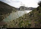 ورود به سدهای استان گلستان در روز طبیعت ممنوع است