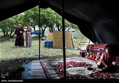 Iranian Nomads Move to Mountainous Regions as Summer Looms