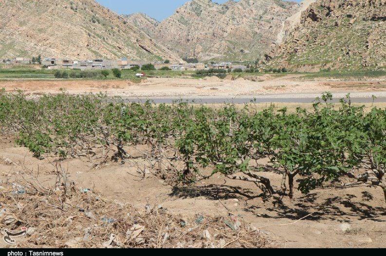 سیلاب از 90 درصد اراضی کشاورزی تخلیه شد