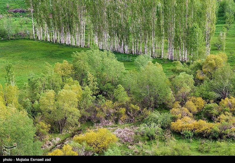 تصاویر هوایی طبیعت بهاری ارومیه