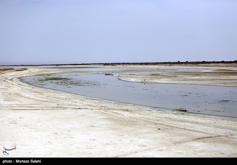 Gavkhuni Wetland: A Well-Known Wetland in Iran - Tourism news