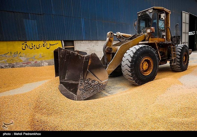 سخنگوی کمیسیون کشاورزی: روزانه 2 هزار و 300 کامیون نهادههای دامی دپو شده بارگیری و در استانها توزیع می شود
