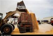 تذکر کتبی مجلس به 2 وزیر؛ تخلیه همزمان مواد غذایی و شیمیایی در بنادر سلامت مردم را به مخاطره میاندازد