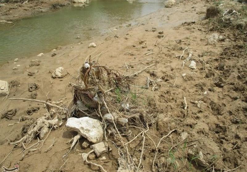 سیلاب به 400 هکتار از باغات بخش کوهنانی کوهدشت خسارت زد