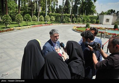سیدعباس صالحی در حاشیه جلسه هیئت دولت