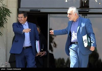 فرهاد دژپسند وزیر اقتصاد و عبدالناصر همتی رئیس کل بانک مرکزی در حاشیه جلسه هیئت دولت