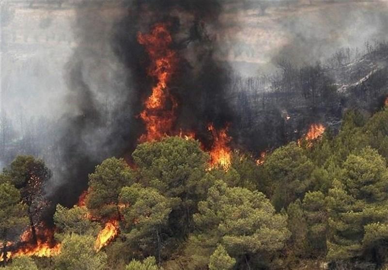 5 شهرستان بحرانی آتشسوزی در لرستان؛ 100درصد حریق جنگلها عامل انسانی دارد