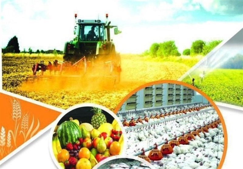 ۱۰۷۳ میلیارد ریال برای بازسازی و نوسازی طرحهای تولیدی در گیلان اختصاص یافت
