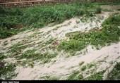 یک میلیارد تومان به کشاورزان خسارت دیده از سیل در استان ایلام پرداخت شد