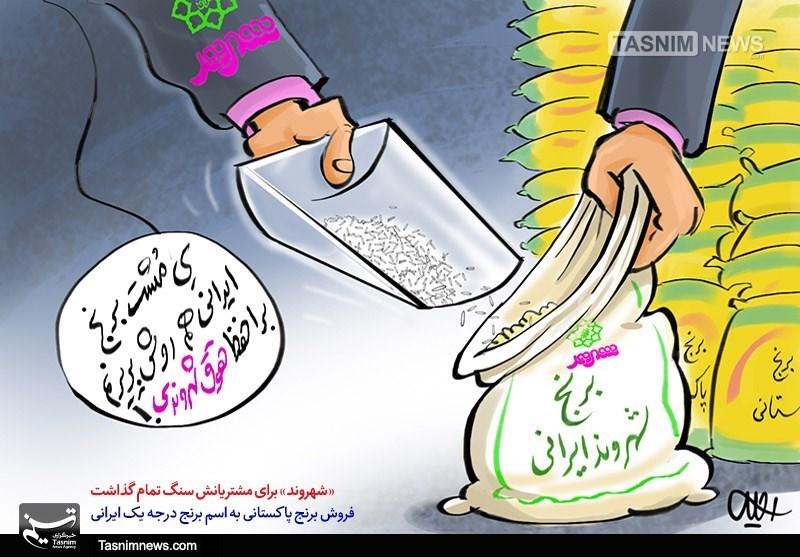 کاریکاتور/ سنگ تمام حقوق شهروندی!!!