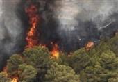 برجکهای دیدهبانی در جنگلهای ایلام برای مقابله با آتش سوزی مستقر شد