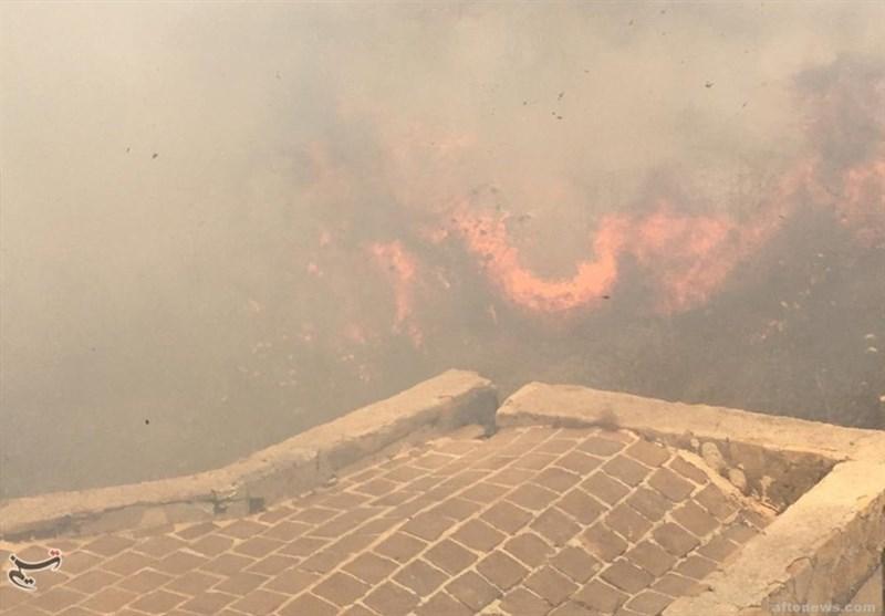 کهگیلویه و بویراحمد| یادگار صفویان در «آتش»؛ آتش سوزی عمدی است+تصاویر