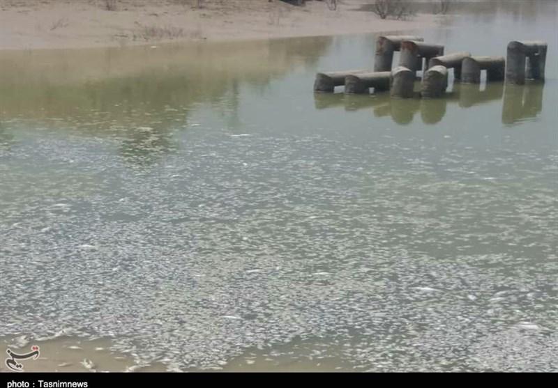 حکایت 450 هکتار زمین تشنه در بهمئی؛ پروژهای که لنگ 25 میلیارد تومان است