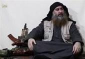 کدام سرکردگان داعش در کنار البغدادی باقی ماندهاند؟