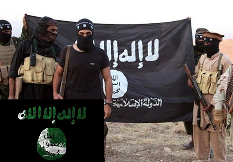 بسیاری از اتباع آلمانی عضو داعش ناپدید شدهاند
