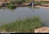 آب به بزرگترین انارستان متمرکز کشور رسید؛ آبیاری 300 هکتار از باغات سیلزده