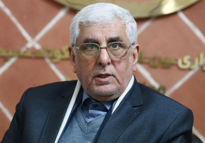 هانی زاده: ادلب آخرین پایگاه تروریستها/ منطقه تا دو هفته دیگر پاکسازی میشود