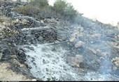 آتش نفسبر در مراتع در بهبهان+ تصاویر