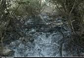 خوزستان  آتش دوباره در کوه منگشت ایذه شعلهور شد