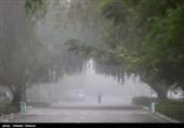 جاده های ایلام مه گرفته و غبارآلود است