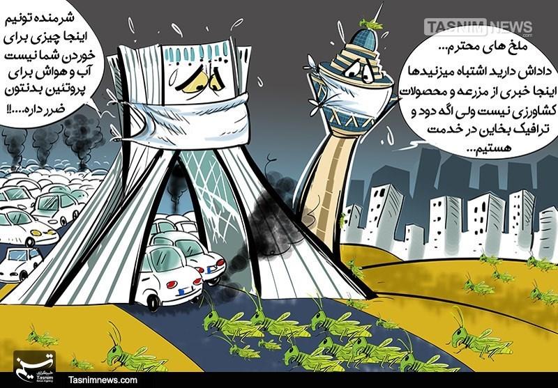 کاریکاتور/ آغاز مقابله با ملخها در تهران