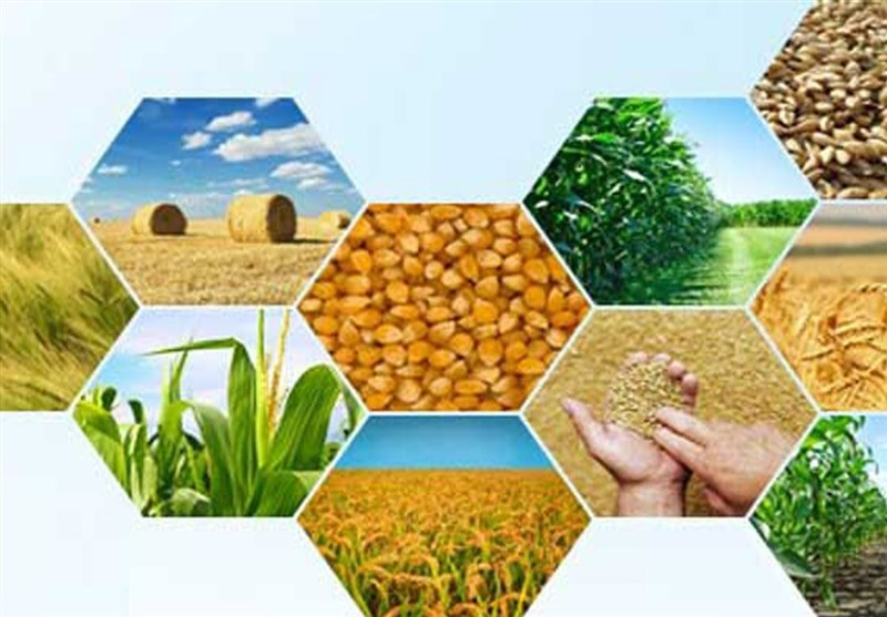 توسعه فعالیتهای صنفی در دستور کار خانه کشاورز استان سمنان قرار گیرد