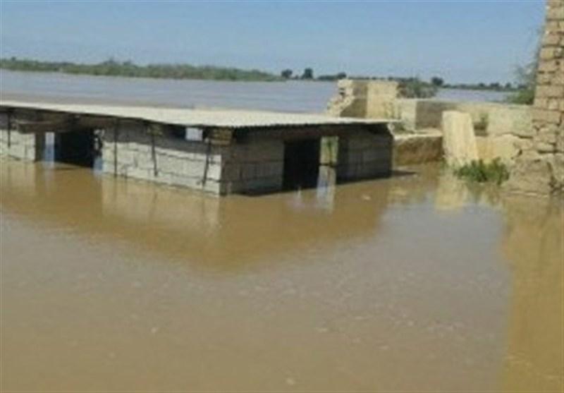 پرداخت تسهیلات به سیل زدگان شتاب گرفت/ 205 هزار هکتار زمین کشاورزی سیلزده از آب خارج شد