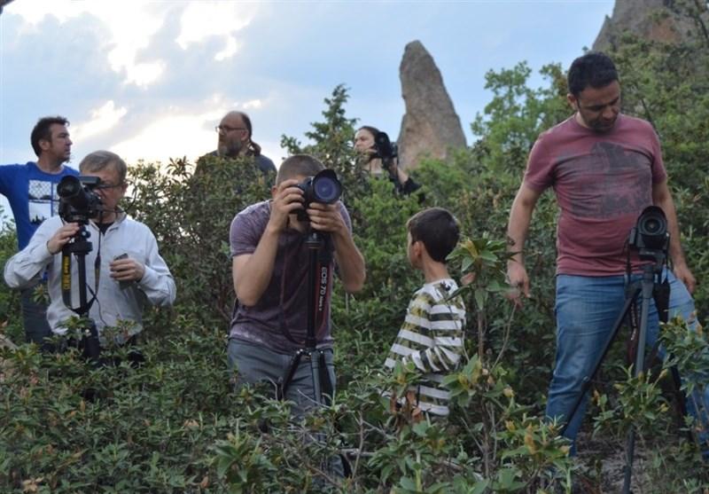 رقابت عکاسان در طبیعت ترکیه + عکس