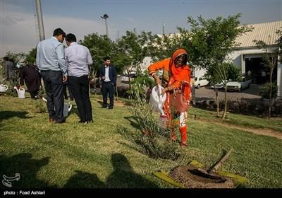 مراسم کاشت درخت بهمناسبت صدو پنجاهمین سالگرد تولد گاندی