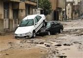 خودروهای آسیبدیده در سیل پلدختر تعیین تکلیف شود