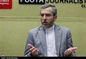 باقری: گزارشگر داخلی حقوق بشر راهاندازی میشود/مبانی آزادیهای مشروع باید تبیین شود