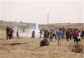 """زخمی شدن چند فلسطینی در حمله صهیونیستها؛ فراخوان برای راهپیمایی """"زمین برای فروش نیست"""""""