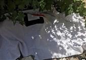لرستان|سقوط بیل دستگاه مینیلودر در دورود راننده را به کام مرگ کشاند
