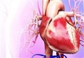 سومین کنگره جهانی قلب رضوی در بیمارستان رضوی برگزار میشود