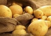 روند کاهشی قیمت سیب زمینی در یزد از ماه آینده آغاز میشود