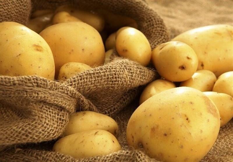 صادرات سیب زمینی به عراق آزاد شد+سند