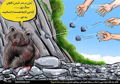 کاریکاتور/ ما با حیات وحش چه کردیم؟!!