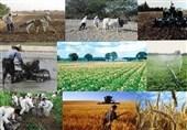 اعطای تسهیلات 100 میلیون تا 2.5 میلیارد تومانی به واحدهای اقتصادی روستایی