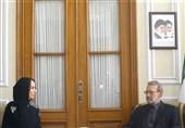 لاریجانی: جریانات تروریستی در منطقه افزایش یافته است
