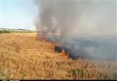 آتش سوزی های مشکوک محصولات عراق و سوریه رامیسوزاند